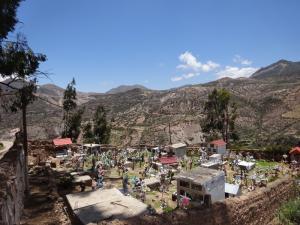 108 0112 Chile - Fahrt nach Parque Nacional Lauca - Socoroma