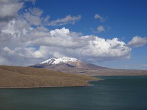 108 0141 Chile - Parque Nacional Lauca - Lago Chungara