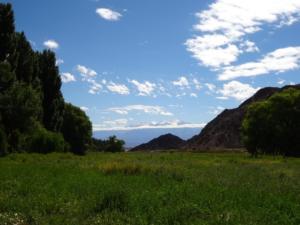 160 0202 Argentina - Barreal - PN Leoncito