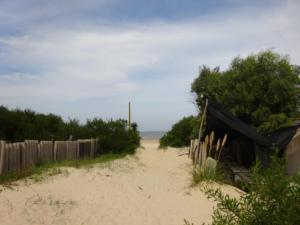 170 0060 Uruguay - Montevideo - Camping Parador Nuevo Amanecer