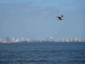 173 0042 Uruguay - Punta del Este