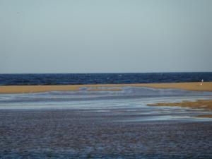 174 0055 Uruguay - La Paloma - Laguna Rocha
