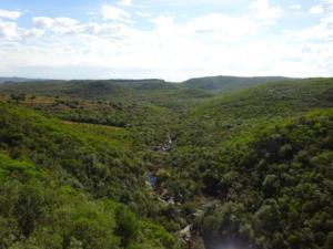 181 0050 Uruguay - Minas - Salto de Penitente