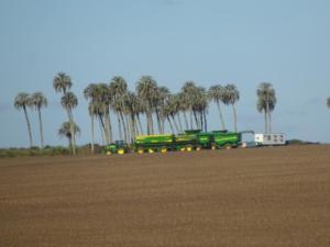 183 0128 Uruguay - Fahrt nach Paysandu